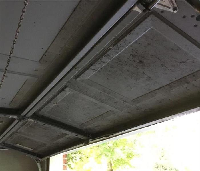 Continued Water Damage in Charlottesville Garage Leads to Mold Before