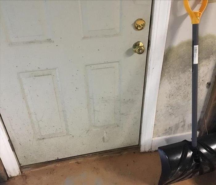 Mold Remediation Storm Damage in a Charlottesville Garage Turns Fuzzy