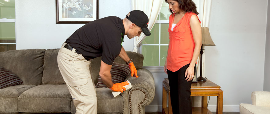 Charlottesville, VA carpet upholstery cleaning
